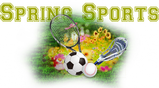 20-21 LHS Spring Sports